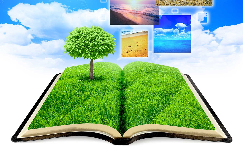 Libro de lectura reflexiva y creativa